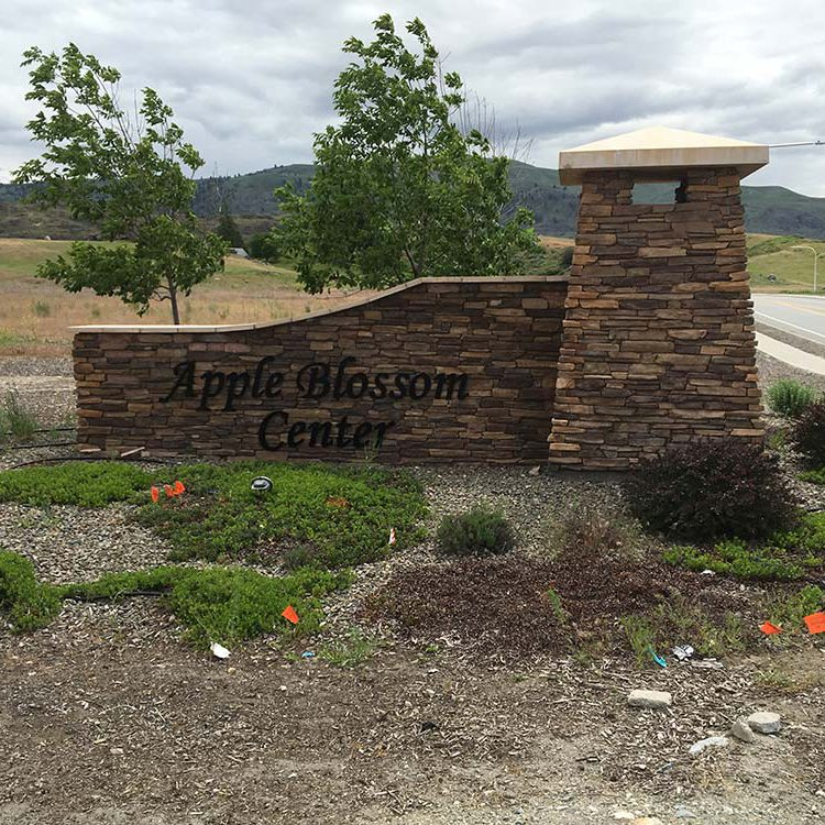apple-blossom-center-4